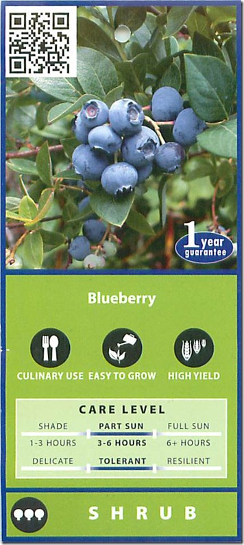 blueberry 2012_06_20_10_12_40_Page_1